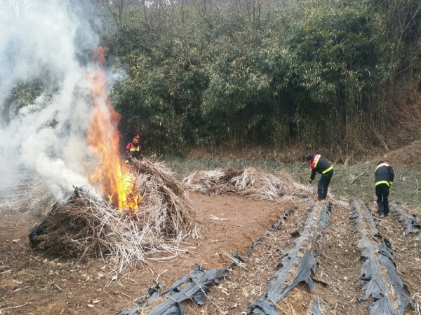 크기변환_0227 비봉면 농산폐기물 소각 대행1.jpg